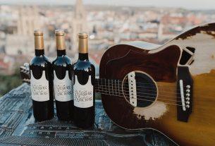 la maravillosa orquesta del alcohol vino